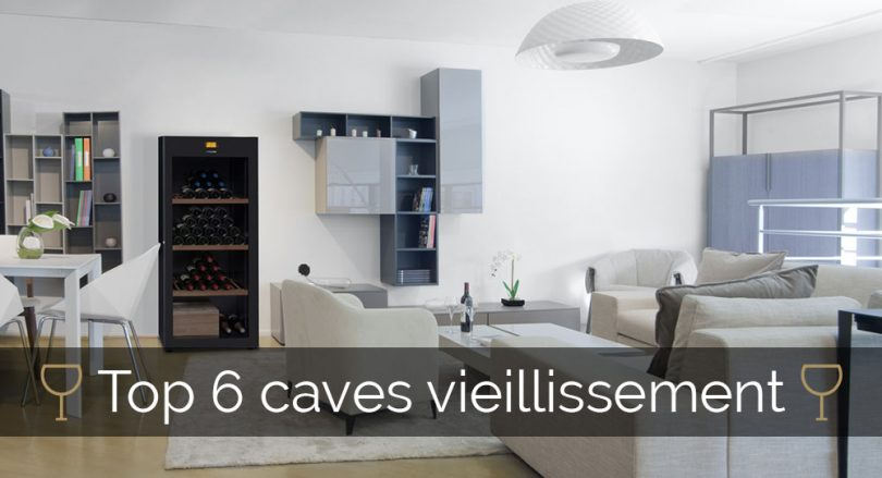 choisir sa cave vin de vieillissement. Black Bedroom Furniture Sets. Home Design Ideas