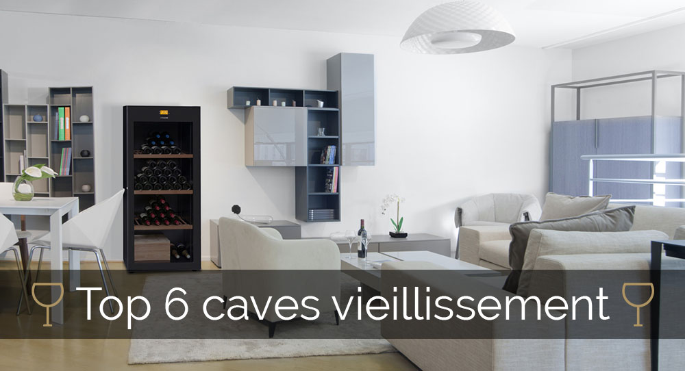 choisir sa cave vin de vieillissement. Black Bedroom Furniture Sets. Home Design Ideas